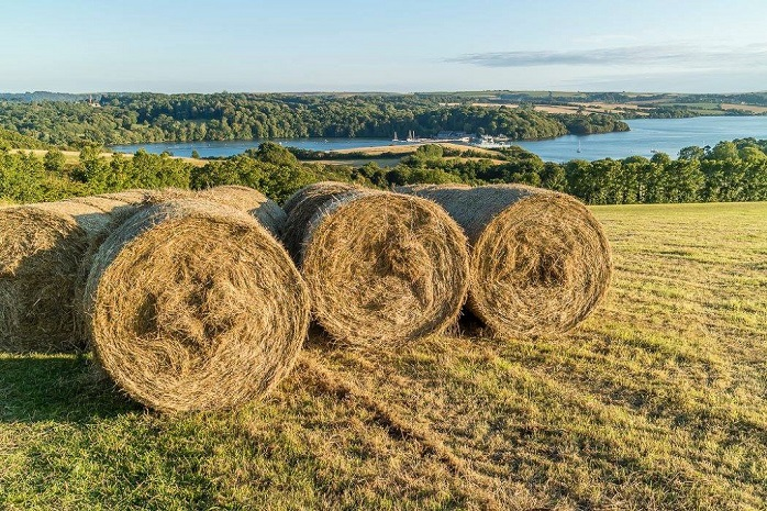 Hay making at Blackers field