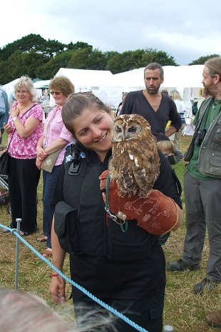 Owl with PCSO
